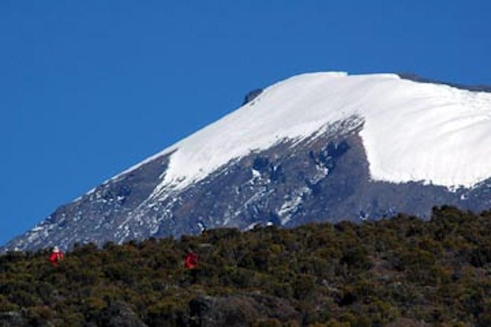 Mt. Kilimanjaro Trek - Marangu Route
