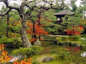 Backpack Japan – Lifetime Experience